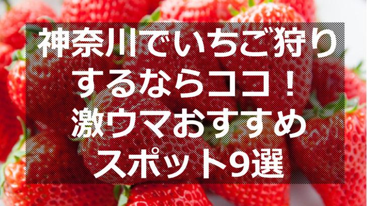 神奈川でいちご狩りするなら!激ウマおすすめスポット9選